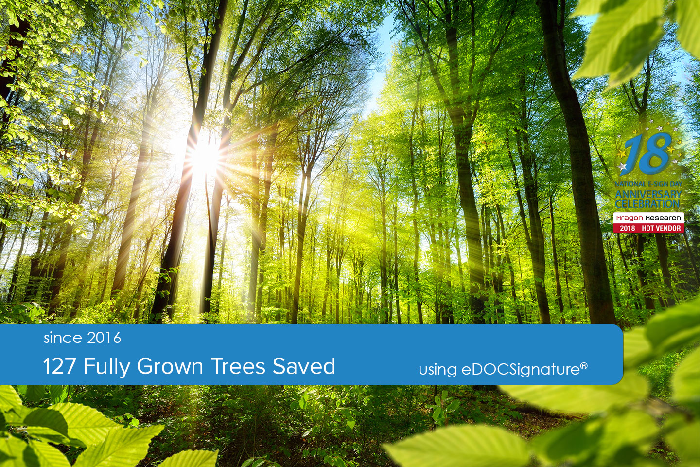 127 grown trees saved using eDOCSignature